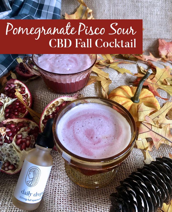Pomegranate Pisco Sour CBD Autumn Cocktail